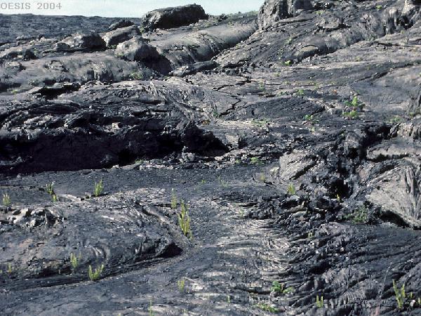 Basaltic Lava Rock Basalt Lava Flow