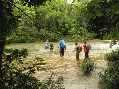 Researchers crossing a stream in Belize during the rainy season