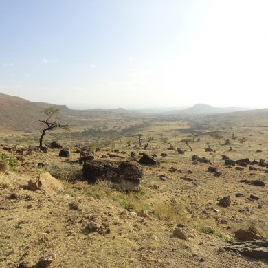 How much deep carbon dioxide comes out of the East African Rift?