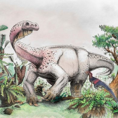 Ledumahadi mafube – New Jurassic Giant of South Africa